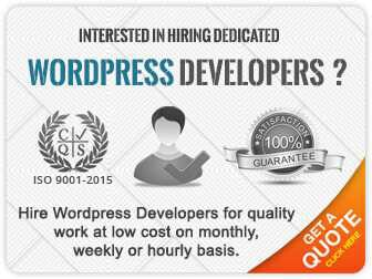 dedicated wordpress developers