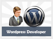 wordpres developer